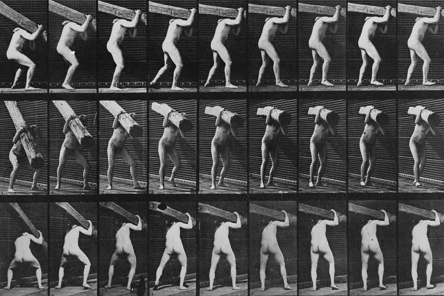 Motion study photograph by Eadweard Muybridge ( Library of Congress )