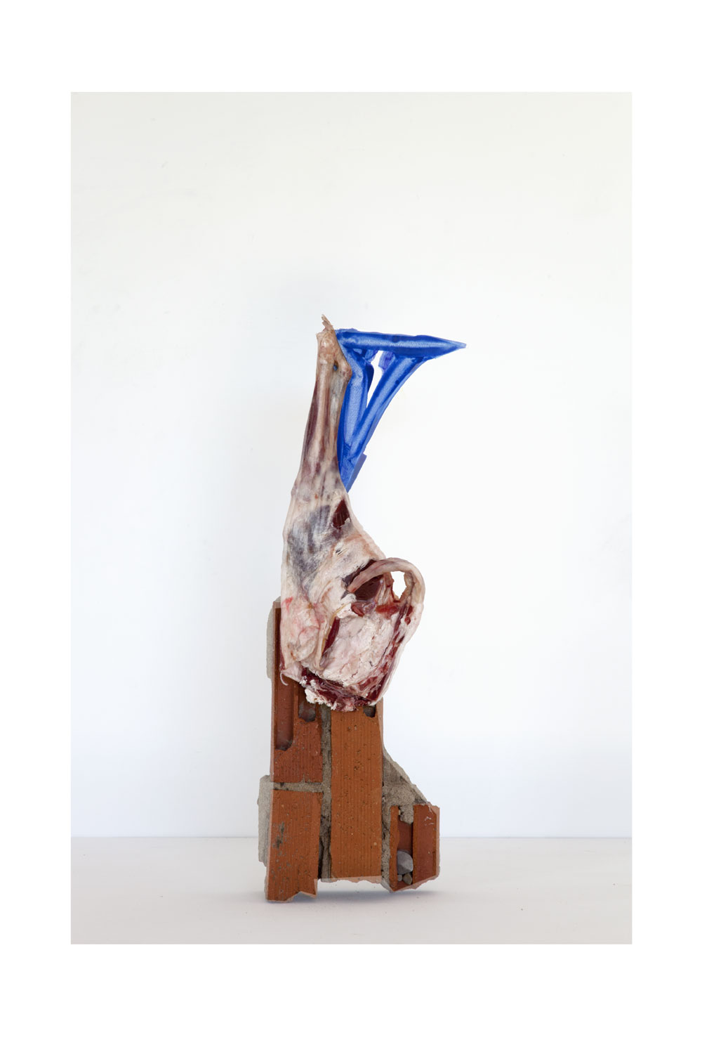 Sculpture (brick, lamb leg, painted paper)