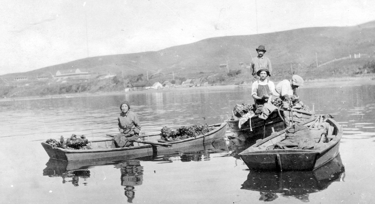 Members of the well-known Smith family of fishermen, harvesting oysters in Tomales Bay, circa 1917. The Marconi Wireless Telegraph Company is just visible in the distance   at left.