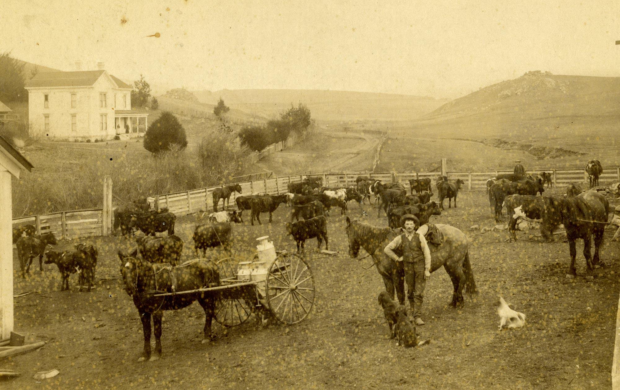 Luke Fallon Ranch