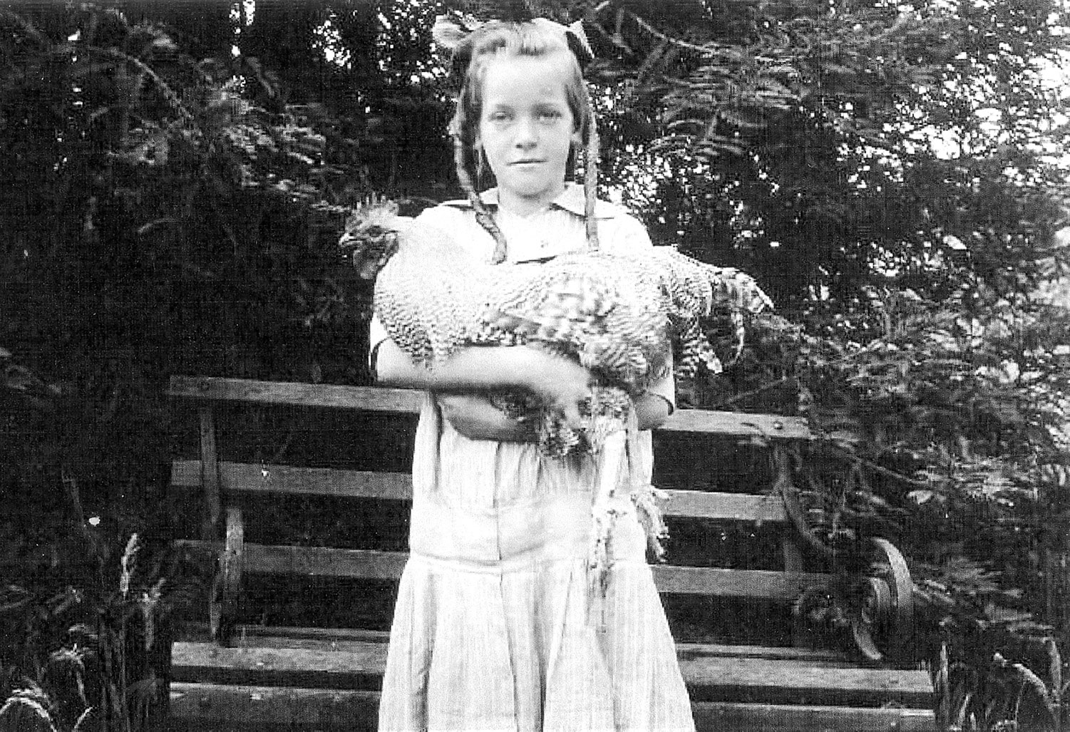 Bench Portrait: Evelyn Fairbanks with Chicken