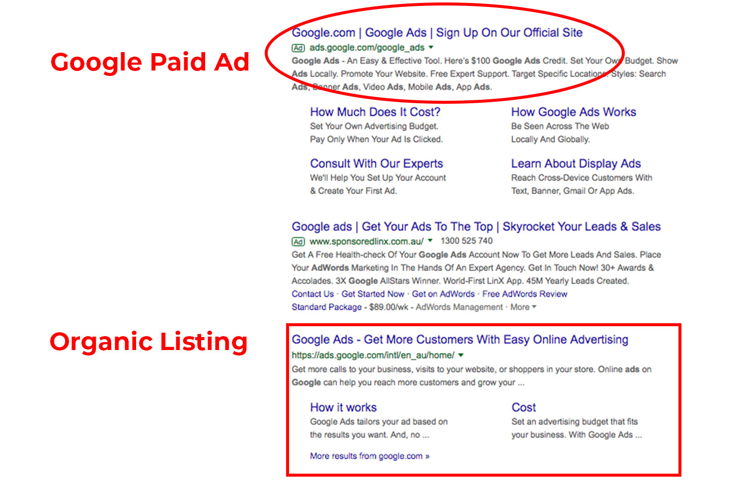 what-is-seo-ladylexproductions-blog-paid-versus-organic.jpg