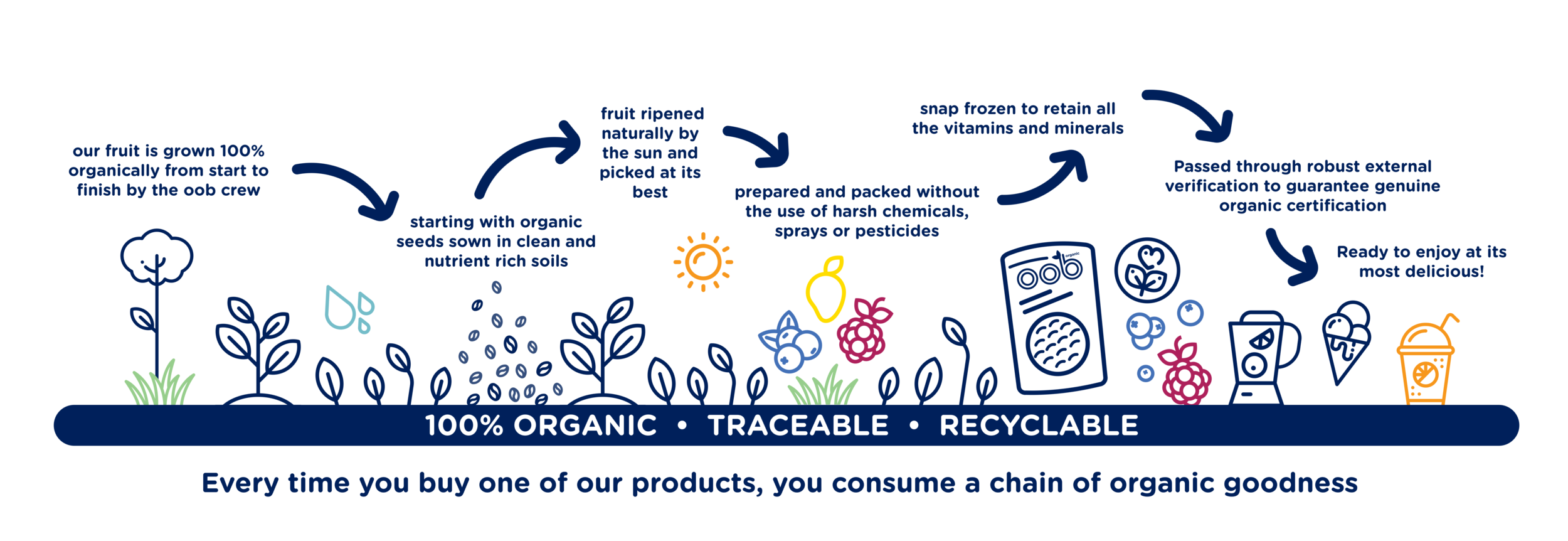 the organic production chain.png