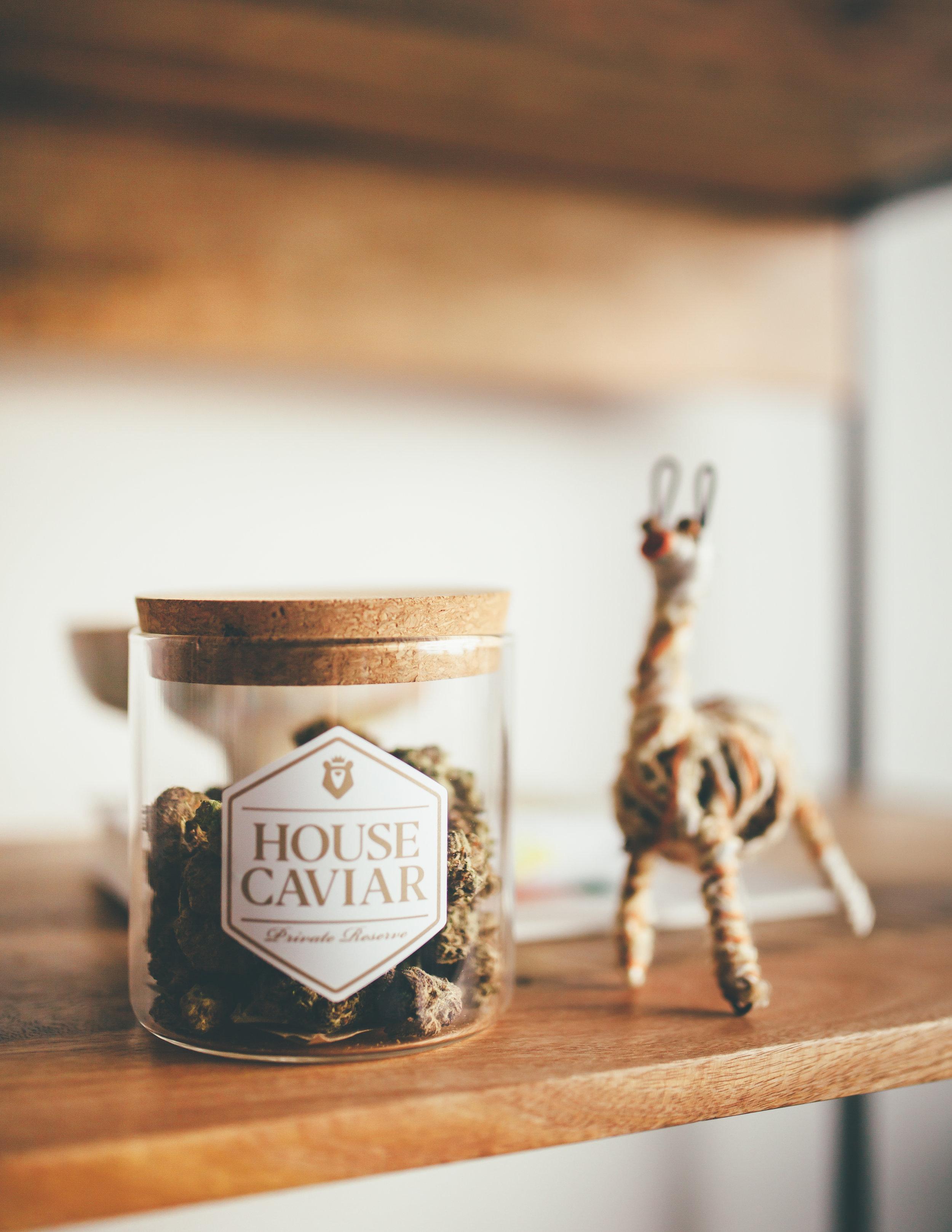 house-caviar_design.jpg