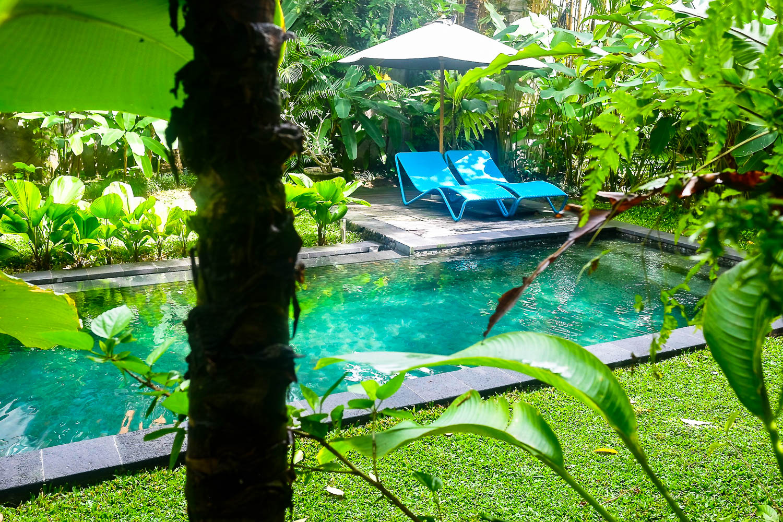 pool passiflora-3991.jpg