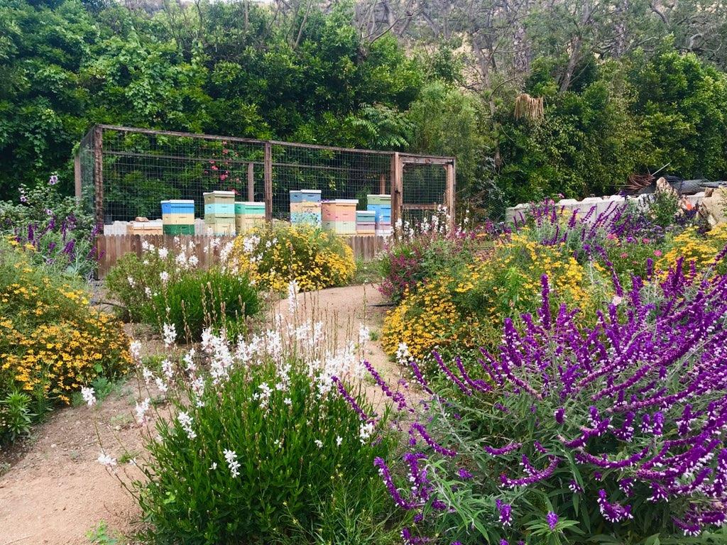 Bee Garden, Malibu, CA