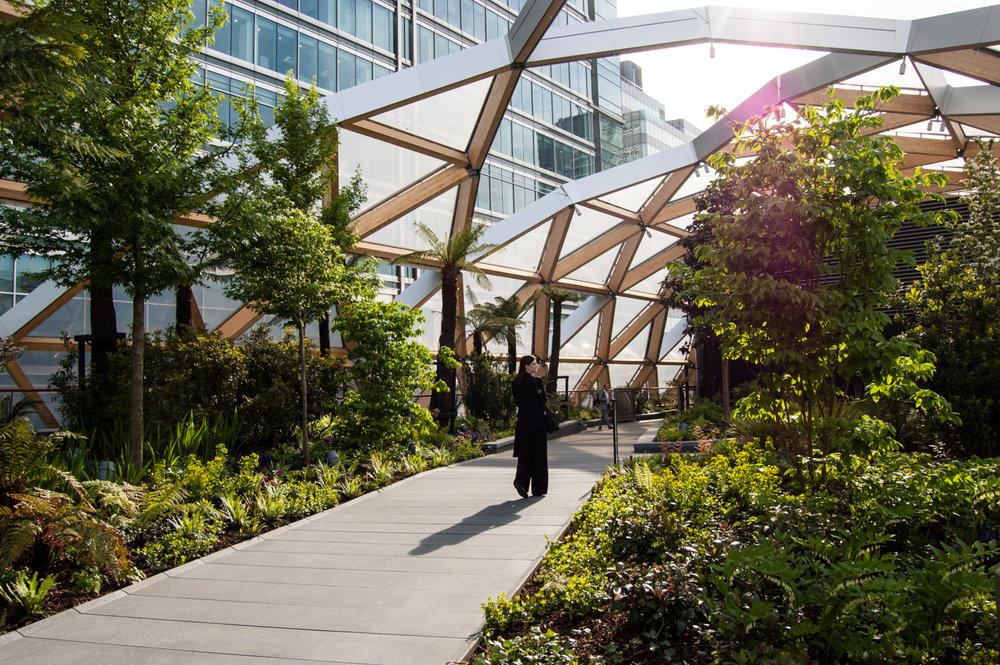 Roof+Garden.jpg