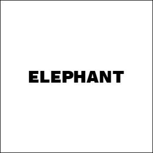 Elephant-Smash-border.jpg