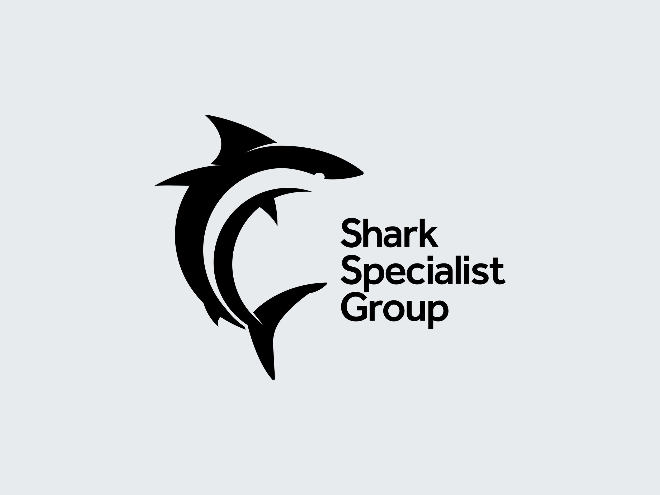Shark-Group-logo.jpg