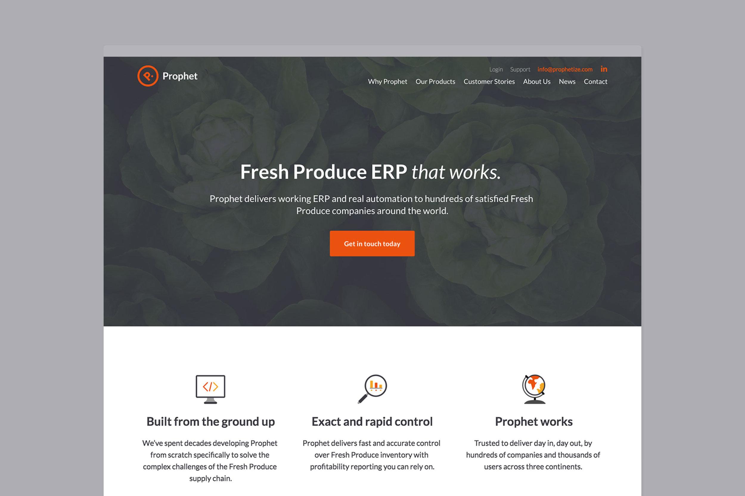 Clear custom web design for Prophet