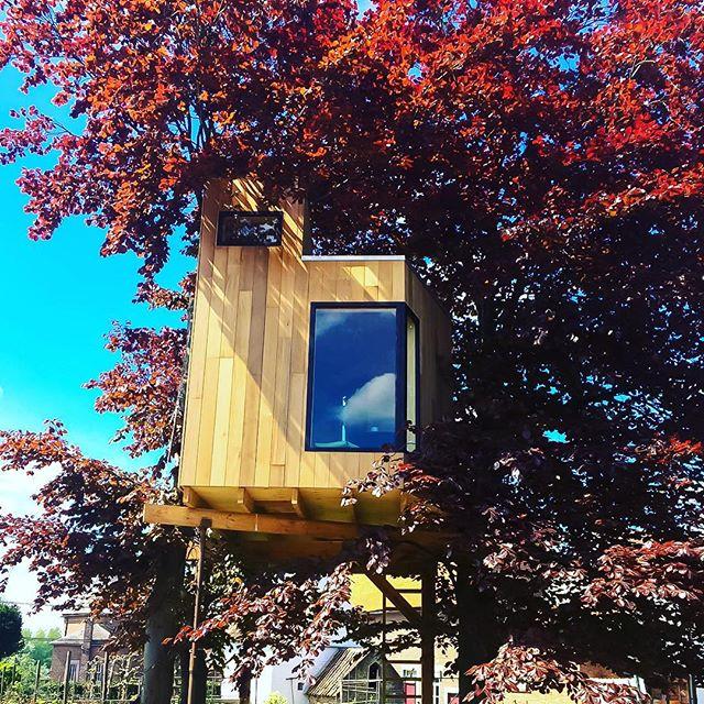 Droom jij ook van een eigen plek onder het bladerdak? 🌳☀️ Voor deze boomhutbewoners mag de zomer beginnen! www.komorebi-boomhutten.be