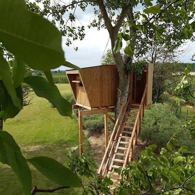 Klaar voor de zomer!? ☀️🍃 . . . . . . #komorebi #gardening #boomhut #buitenleven #craftmenship #limburg #haspengouw #treehouse #bomen #tuininspiratie #uitzicht