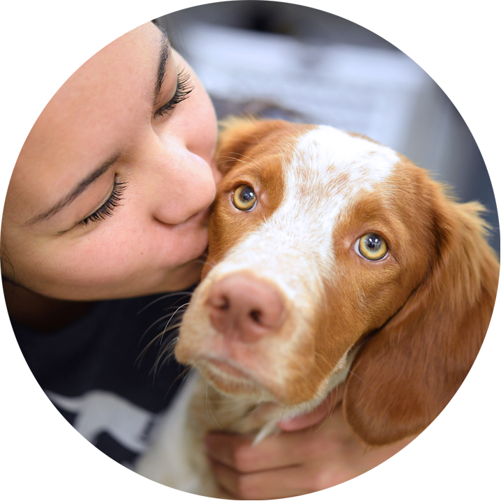 The first thing we're looking for is a passion for pups. - We want people who wake up every day eager to see some four-legged, fun-loving friends, and who aren't afraid to get their hands wet helping those dogs lead happier, healthier lives.