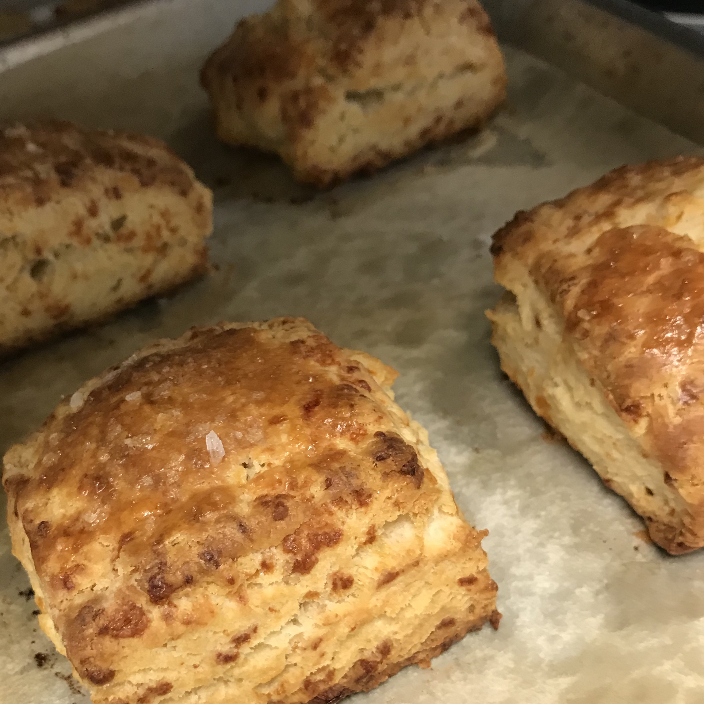Buttermilk Cheddar Biscuits . Back to Basics . Week 10