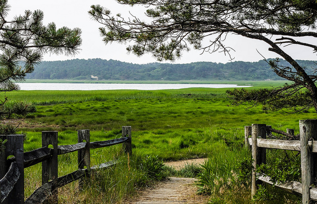 Cape Cod's Great Island Trail -  Photo by John Lee
