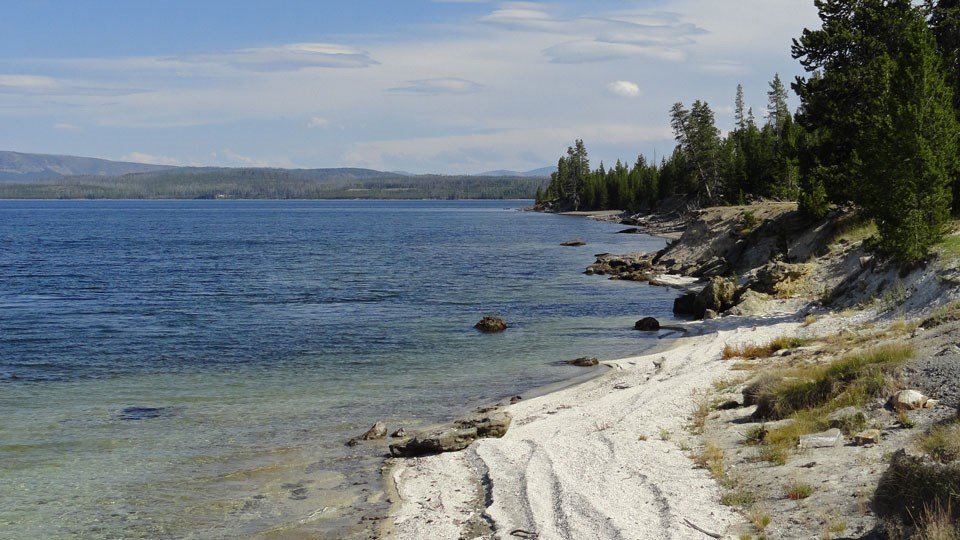 Shore of Yellowstone Lake near West Thumb Geyser Basin
