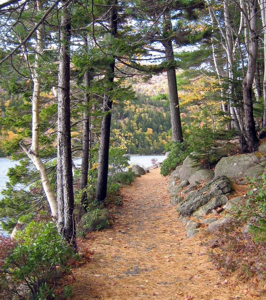 The trail around Lake Jordan Pond