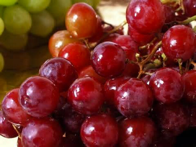 RED-SEEDLESS-GRAPES.jpg