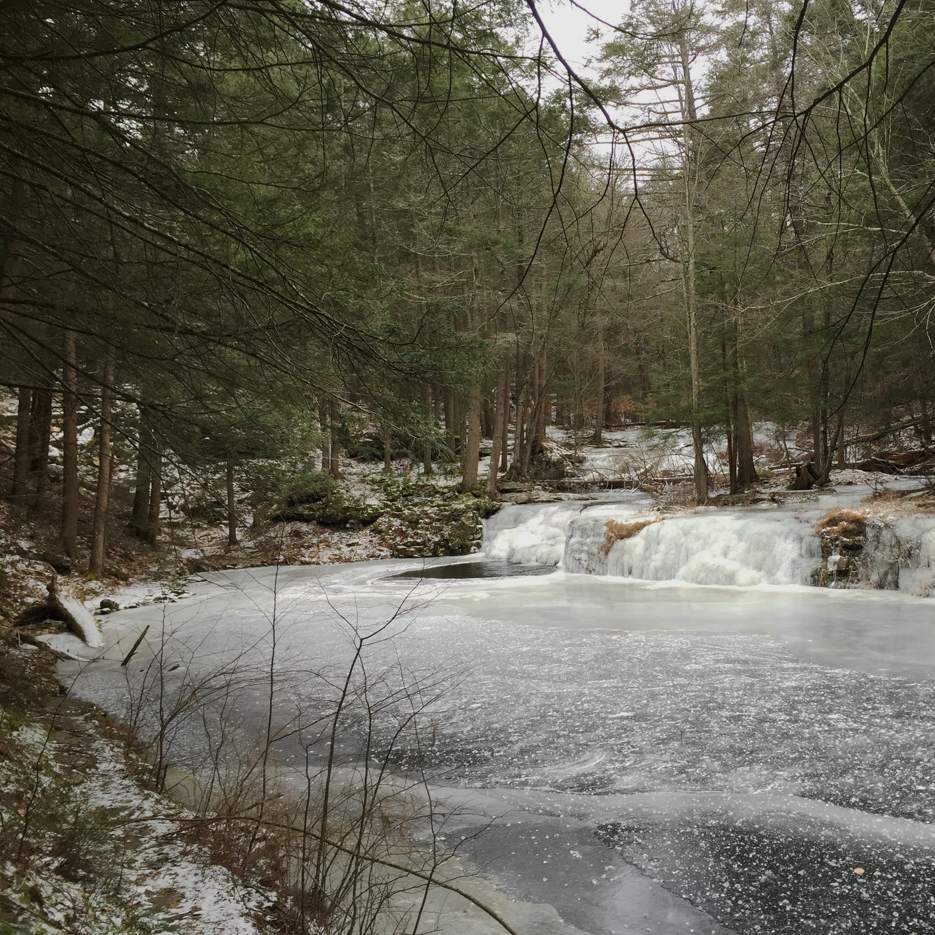 Dwarfskill Pond Feb 2016.jpg