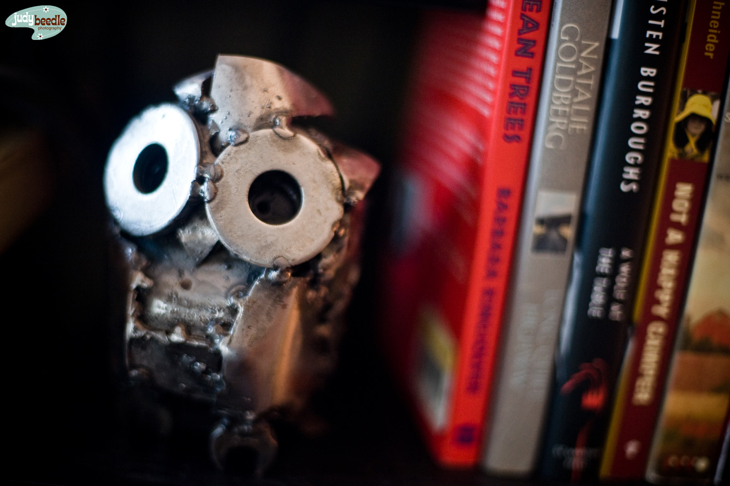 3/19 Home nook. Metal owl by the hubs.