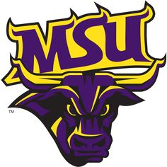 Minnesota State University- Mankato