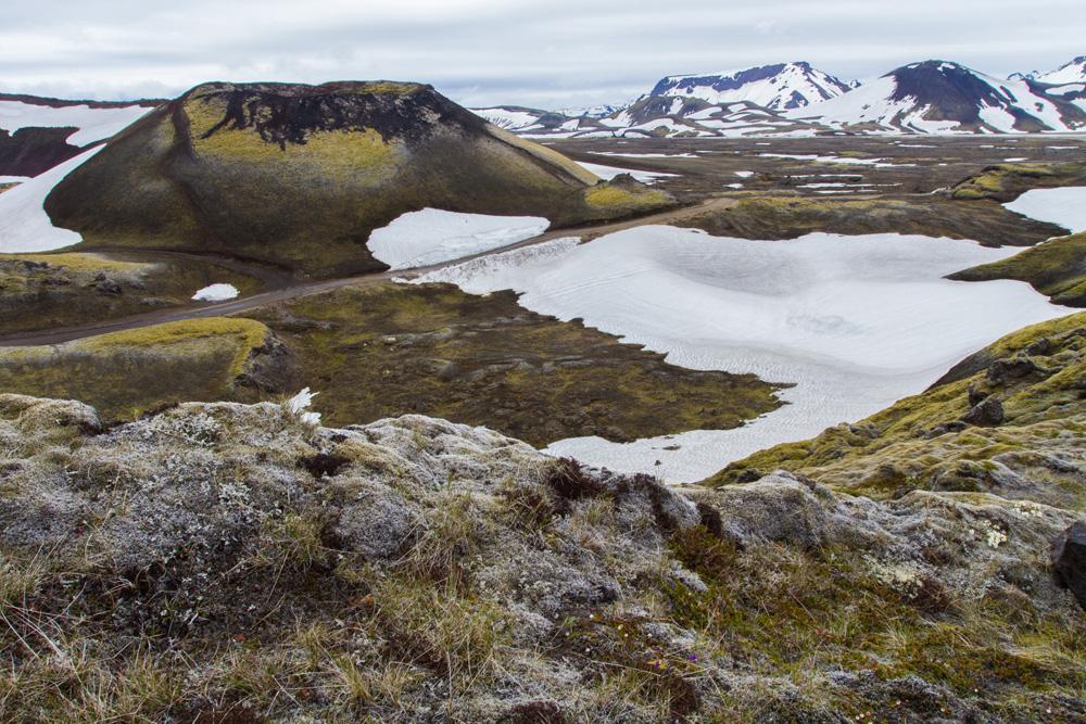 landschap IMG_7560-1.jpg