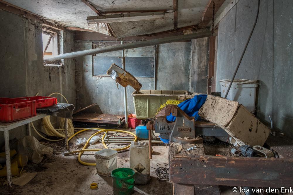 Varkens proefboerderij 2018 by Fotoclub_Salland-1.jpg