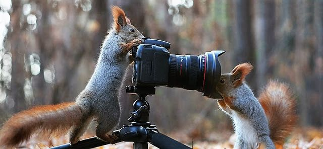 Plezier met de camera