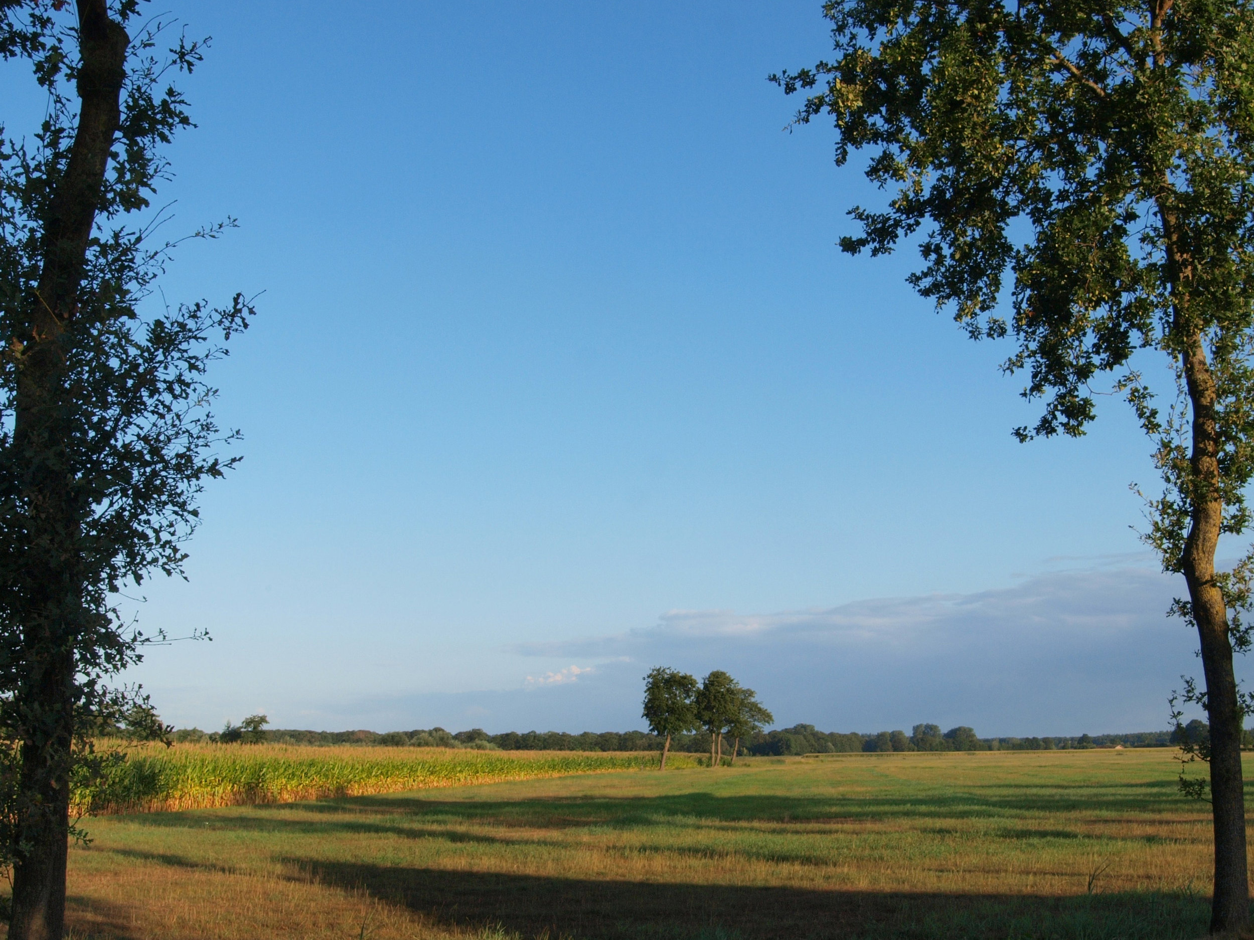 Fotograaf Carla Eshuis - Overijssels landschap