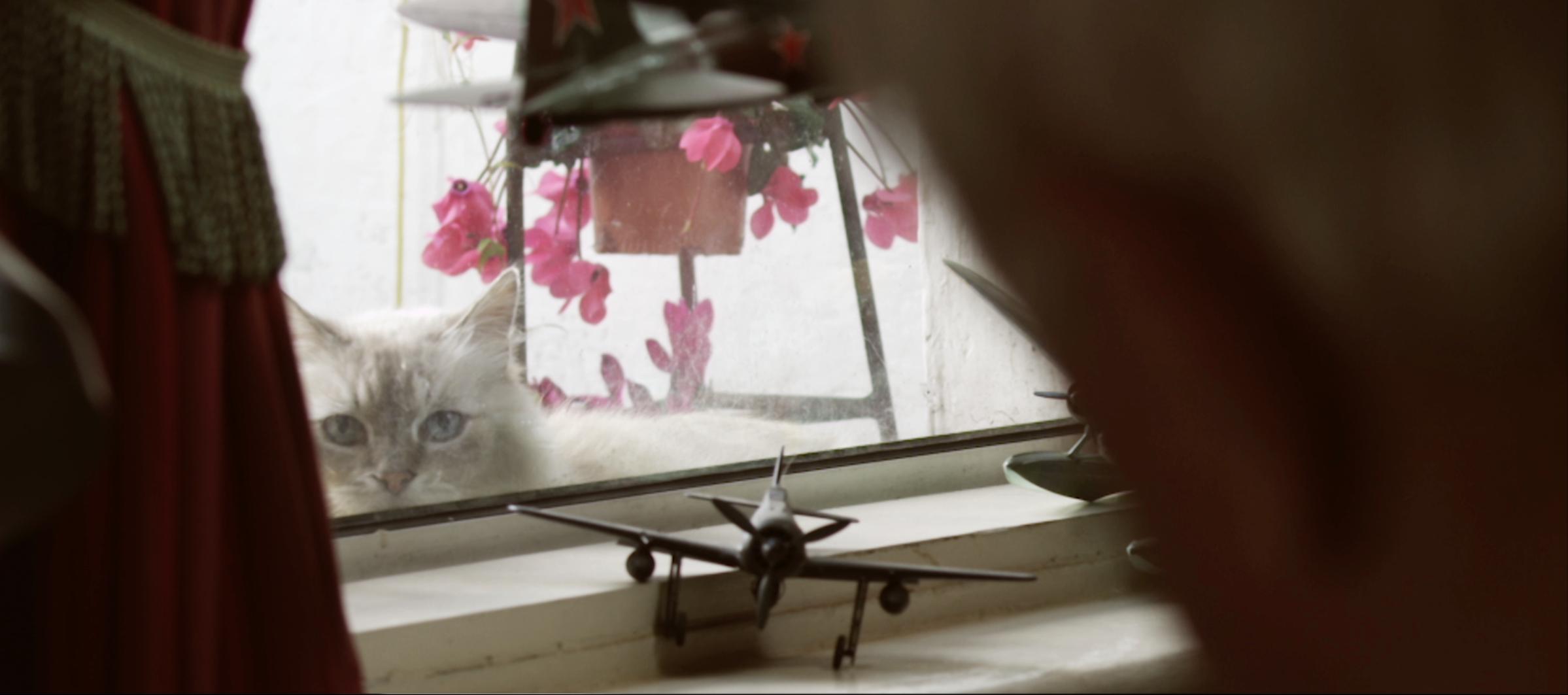 Helen Flanagan An Cat Tg4 Filmbase