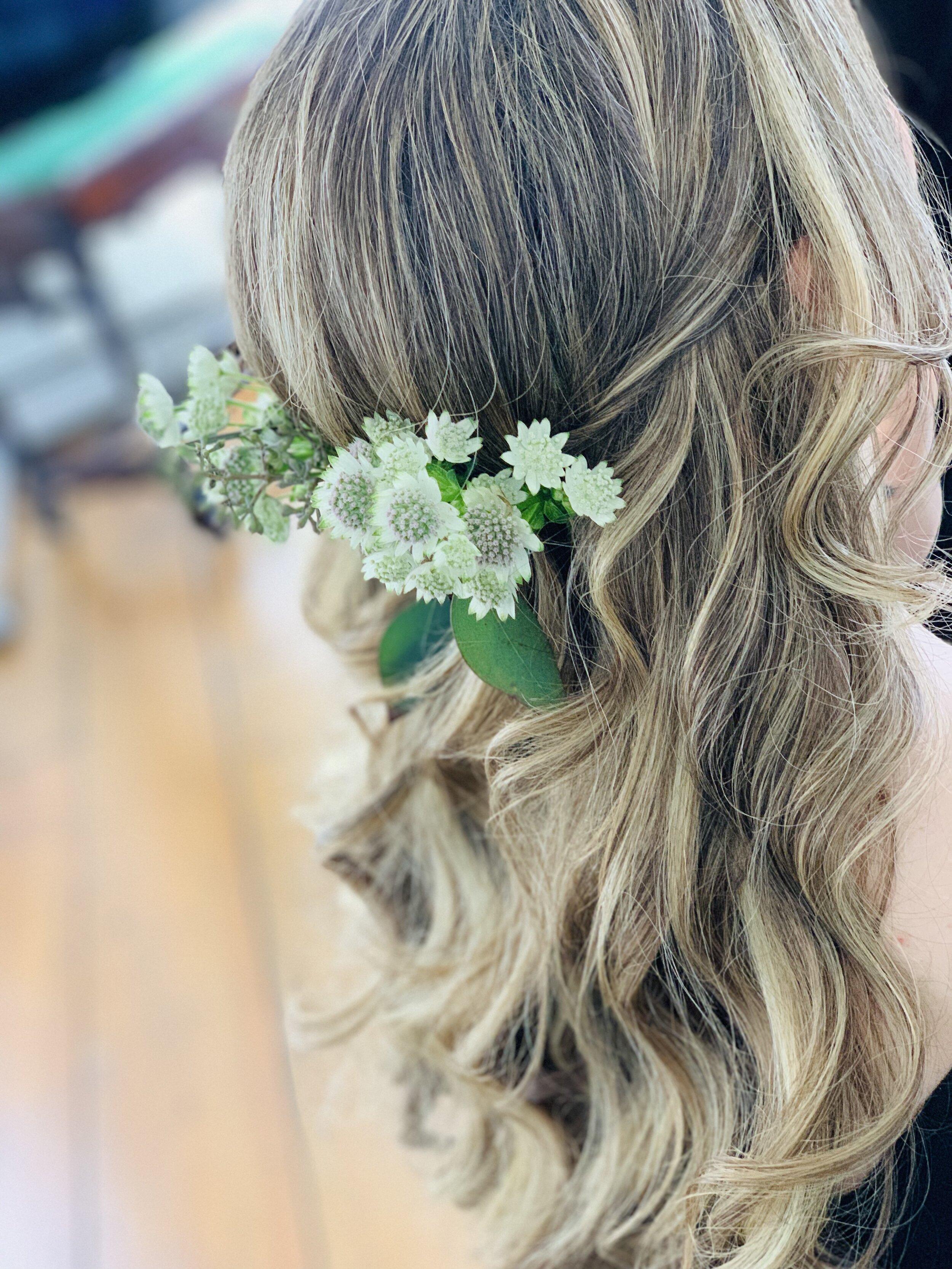 Alexandria Gilleo hudson valley hair.JPG