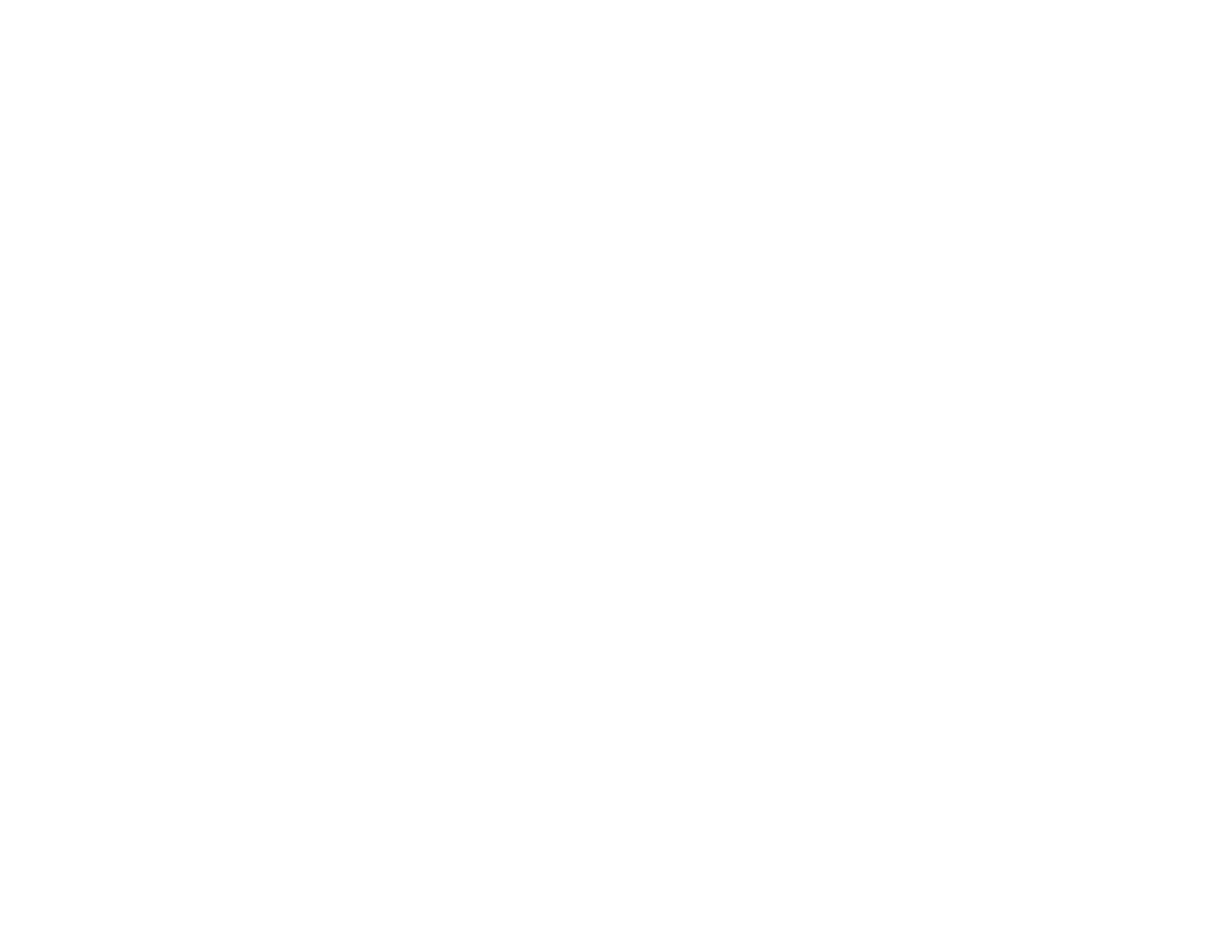 TEAM-logo-white.png