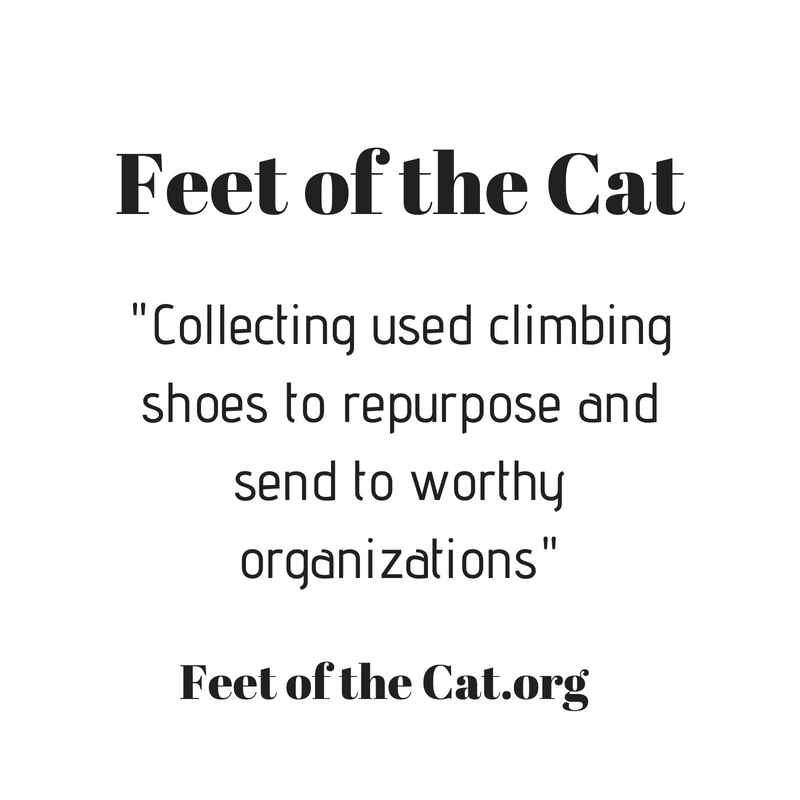 Feet of the Cat.png