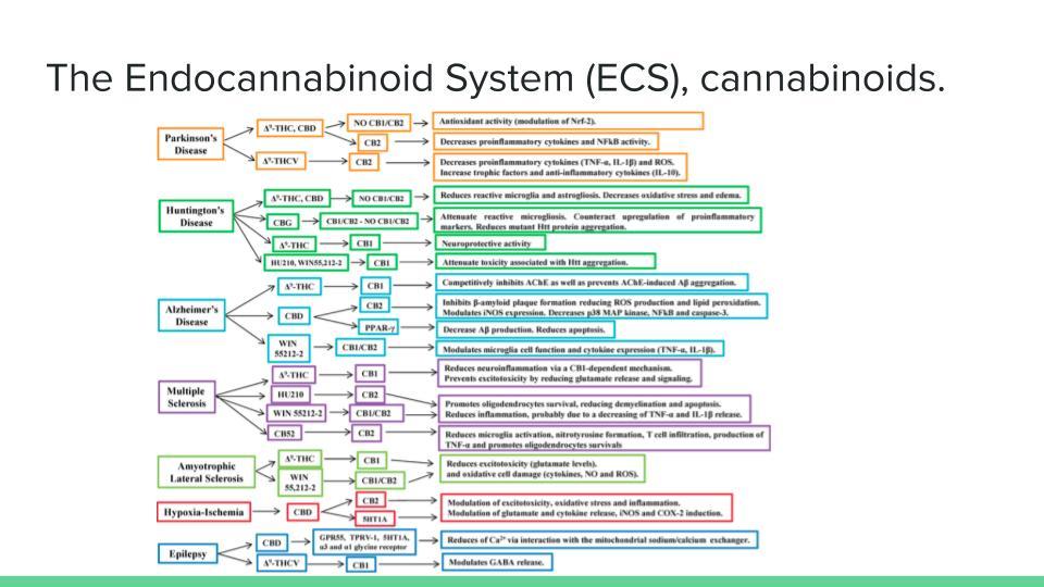 ECS_ An introduction (8).jpg