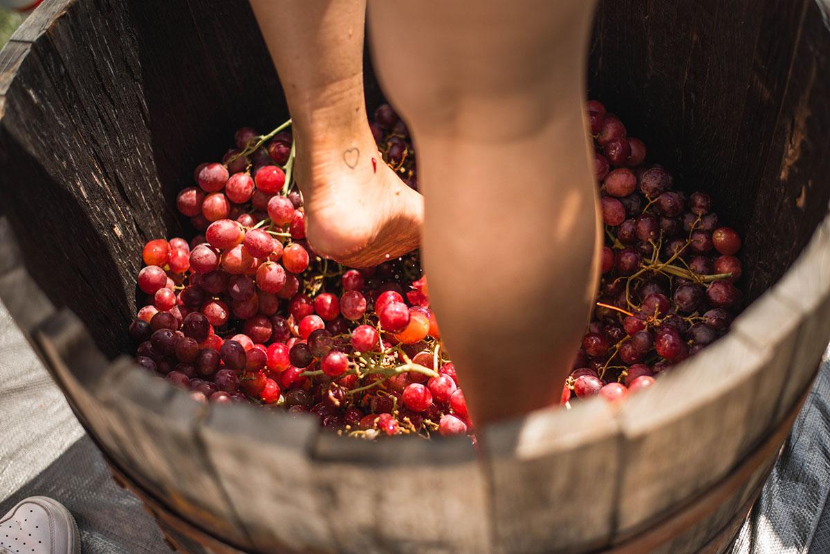 2018.10.06 Plano Wine and Food Fest - 197.jpg
