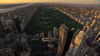 FOA_still_NYC.jpg
