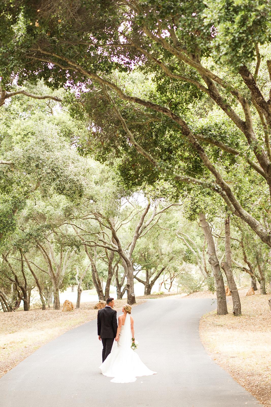 Driveway & Oak Groves