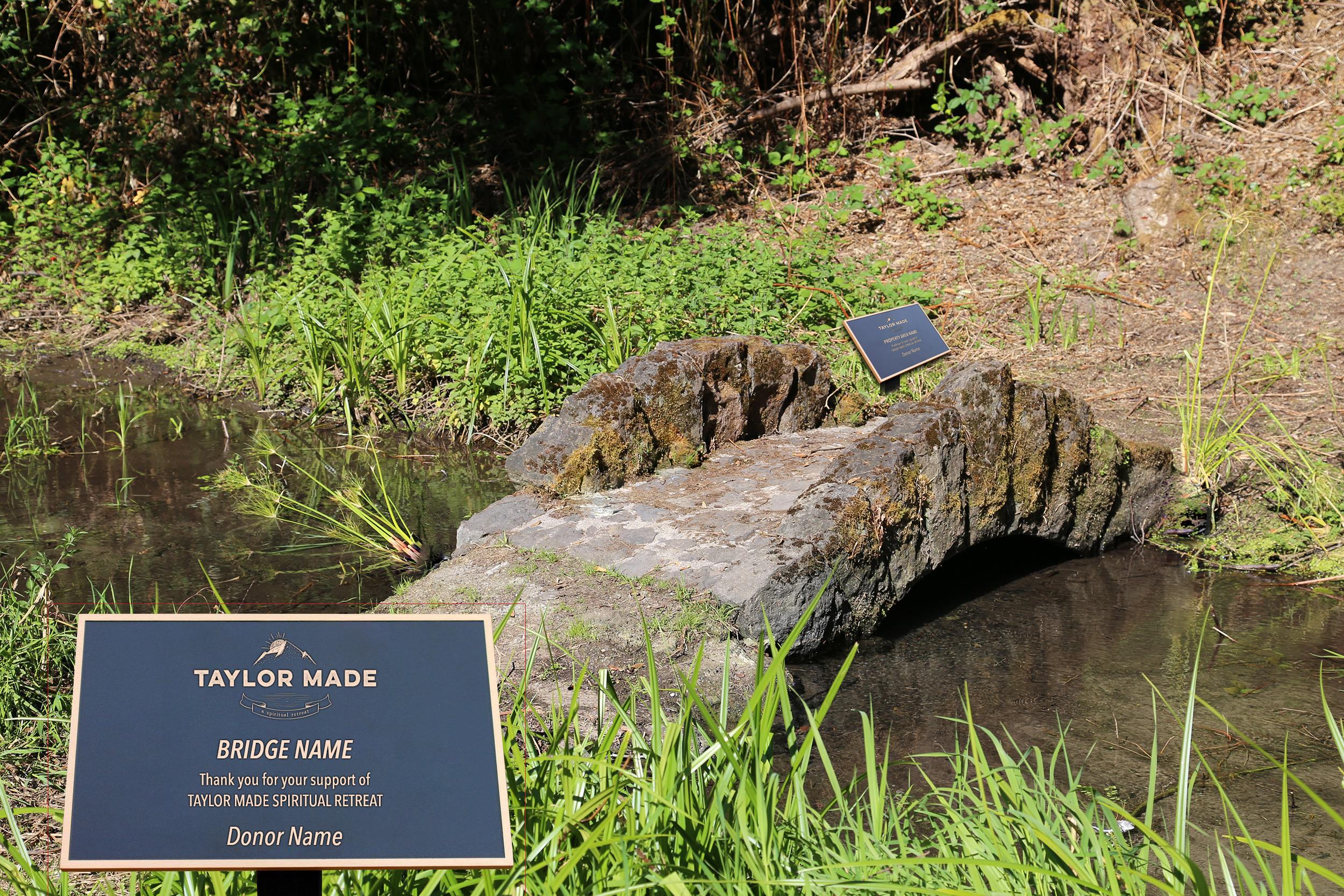 TM-Bridge-3.jpg