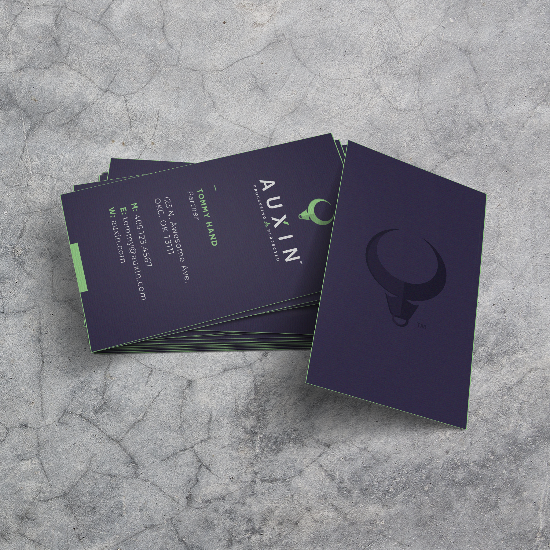 Business-Card-Mockup_Auxin.png