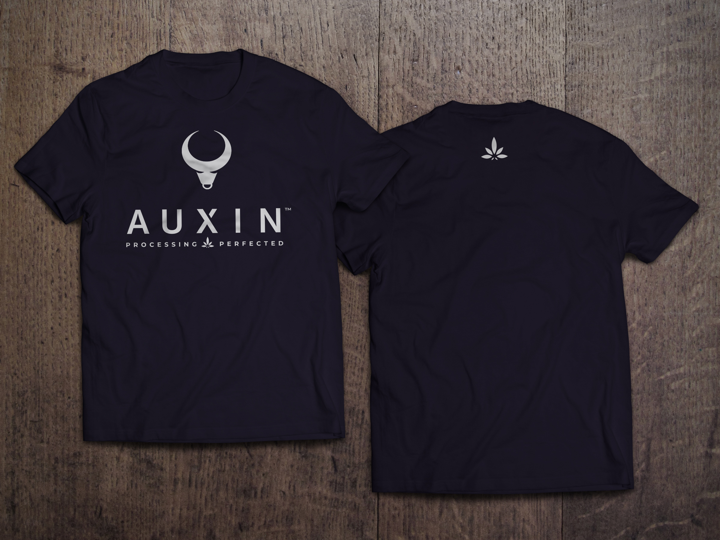 T-Shirt-MockUp-Front-and-Back.jpg