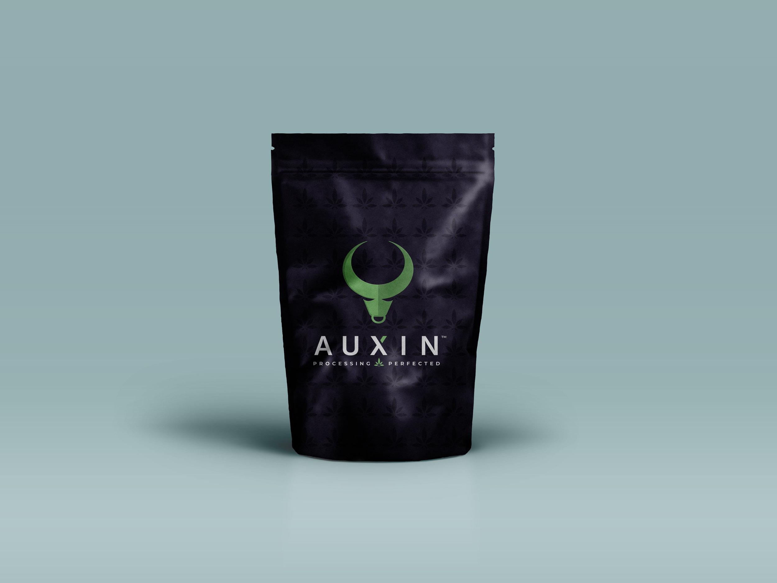 Paper-Bag-packaging-Mockup-psd.jpg