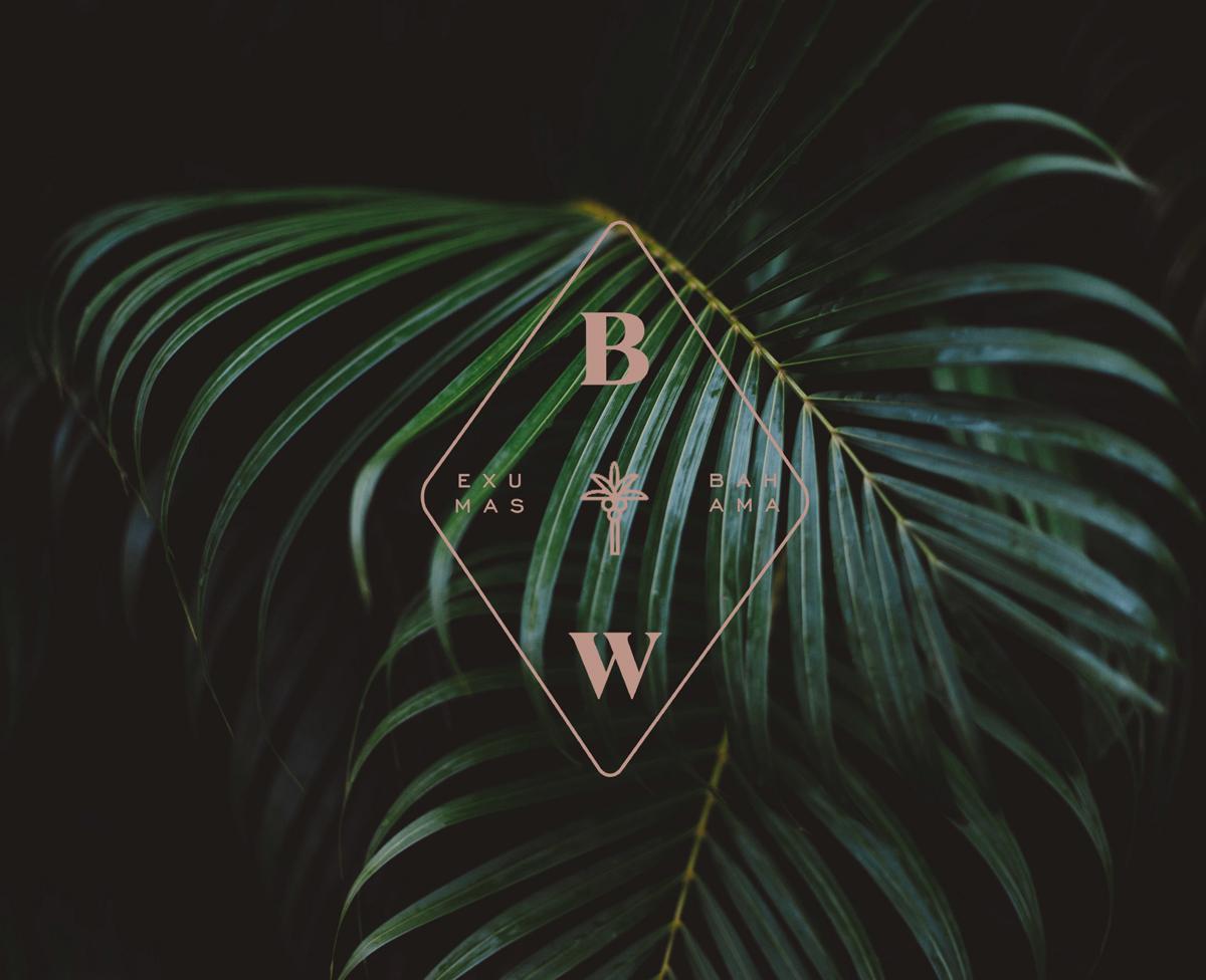 brentwood palm web.jpg