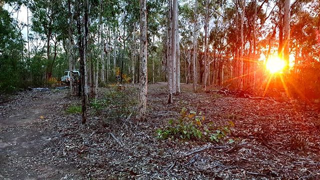 Finishing up another day on the trails, 👌 Bunting gone in and ready for tomorrows ride day.  Regos closed, don't worry we can sort you out on the day if your wanting to race.  #qldenduroseries #tamrookumcreekmtb #scenicrim
