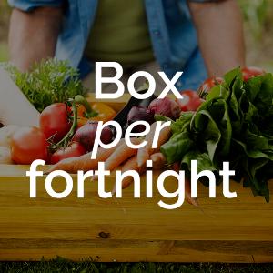 box per fortnight.png