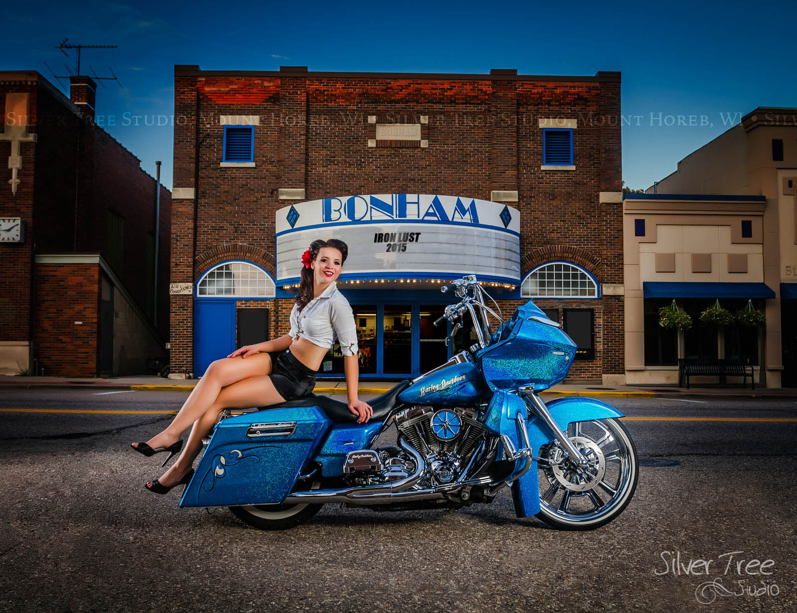 Commissioned by Sauk Prairie Harley Davidson