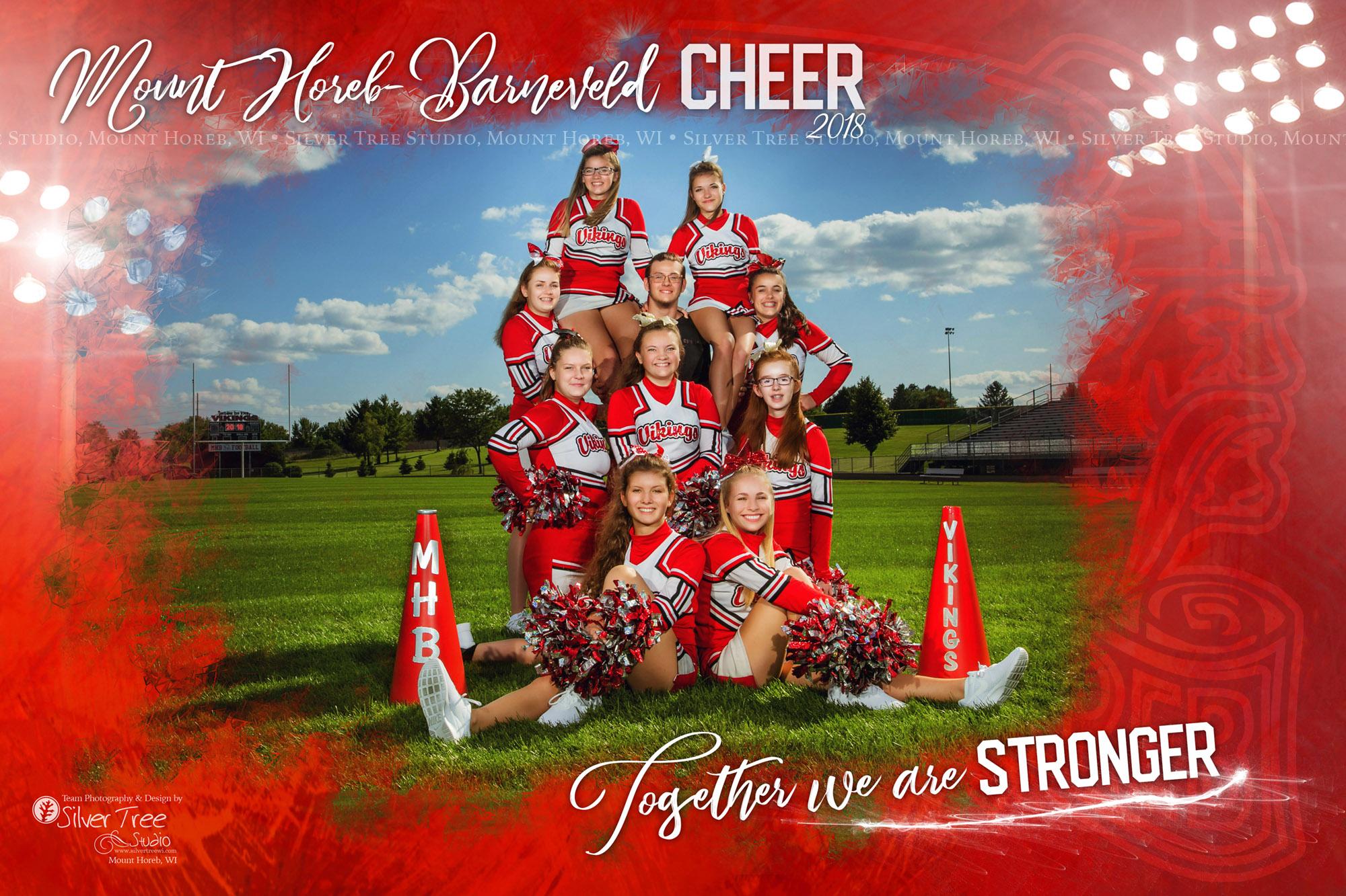 2018_Mt-Horeb_Cheer-Team-SilverTree.jpg
