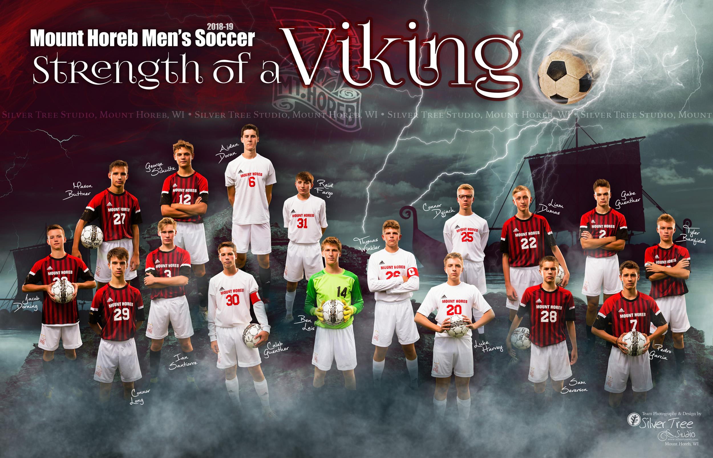 2018-Mt-Horeb-Mens-Soccer-Team-SilverTree.jpg