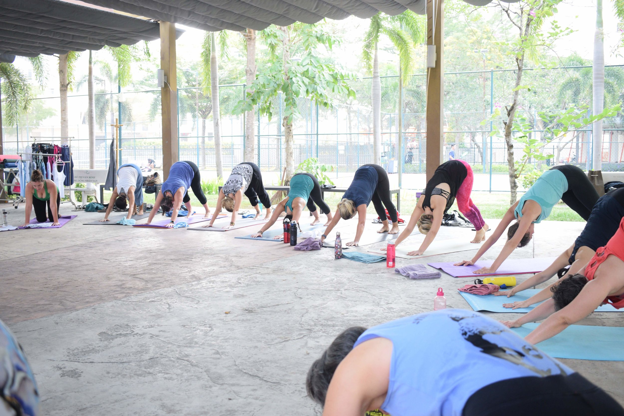 108-sun-salutations-yoga-joy-saigon-downward-dog.jpg