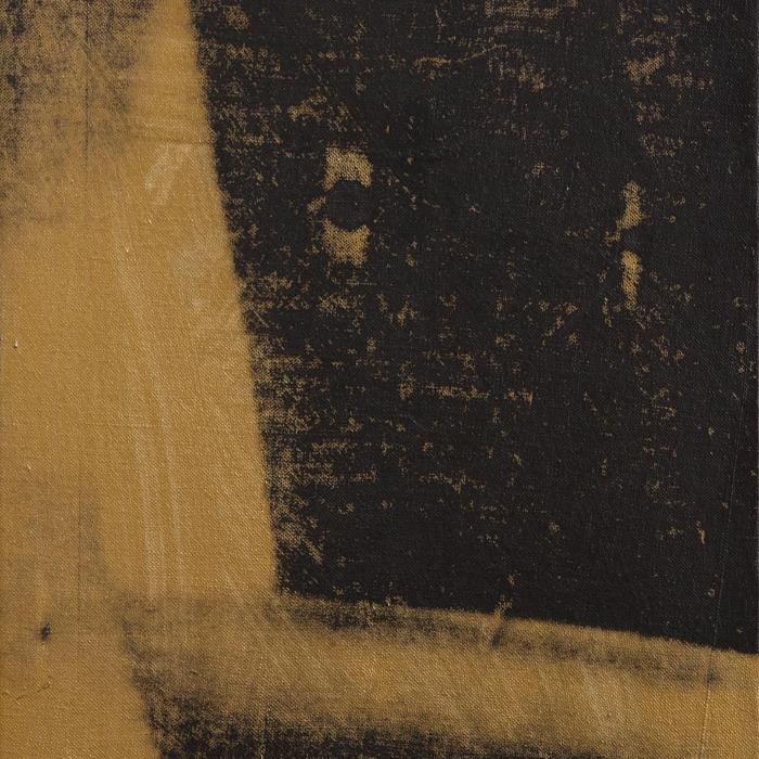 Cover art:  Andy Warhol ,  Shadow  (crop)