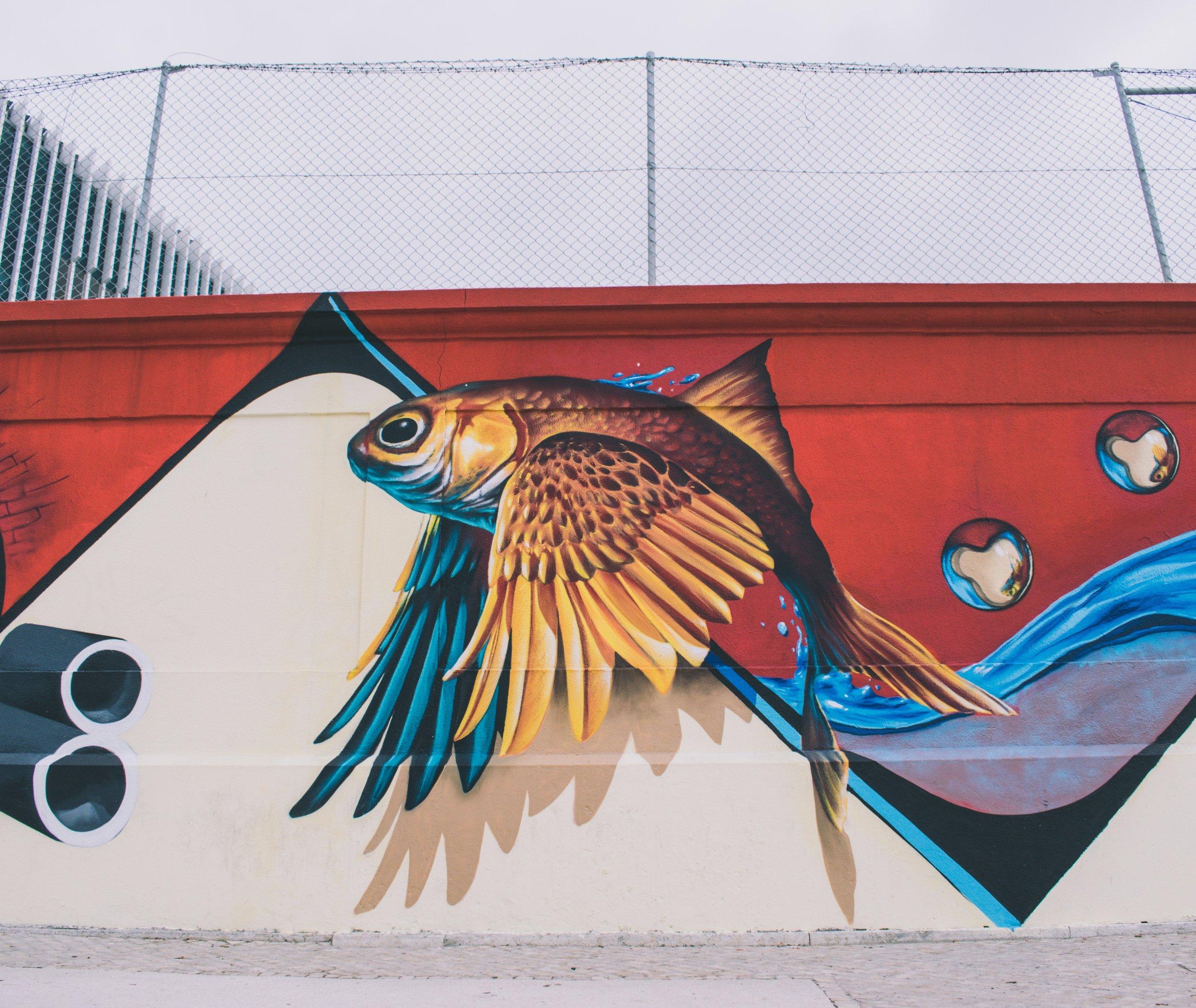flying fish 1.jpg